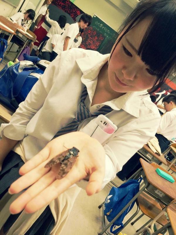 【画像】学校で無邪気な女子高生画像集