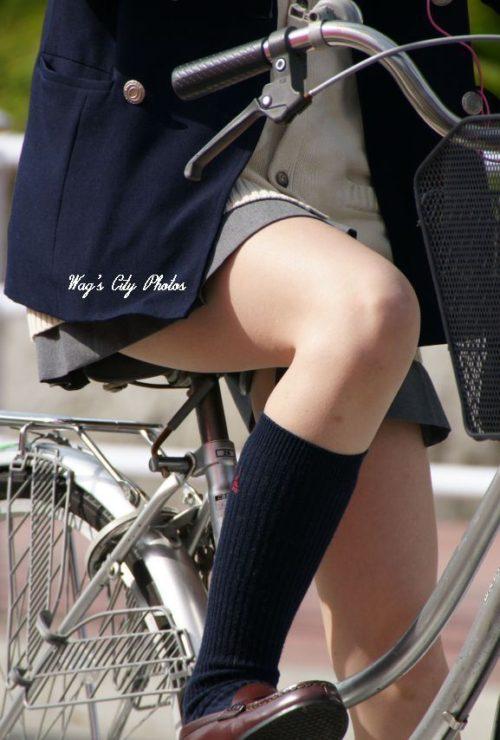 【画像】自転車に乗ったJK目で追う奴wwww