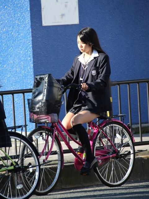 【画像】自転車JKのチラリズム感たまらんぜ