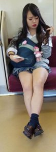 【画像】電車内でこっそり女子高生盗撮奴www