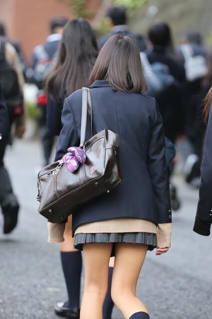 【画像】野良女子高生を遠くから撮影した写真がこちら