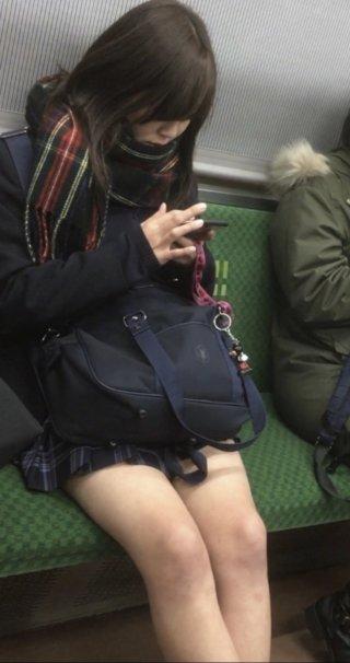 【画像】電車で女子高生見たらイケナイこと想像するよね?