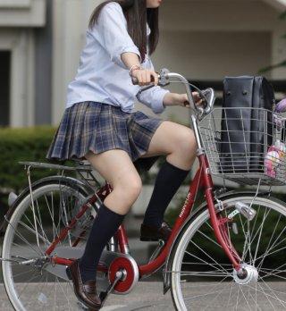 【画像】自転車女子高生のチラリズムのエロさがこちら