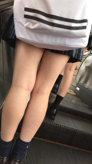 【画像】女子高生のふとももにぶっかけたくなる写真集