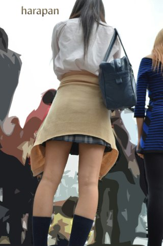 【画像】女子高生のえちえちなふとももにチンピクしない成人男性おる?