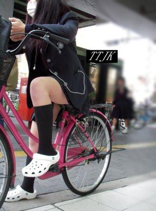【画像】JKが自転車乗ってたらまずふともも見るよなwww