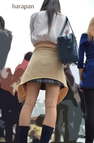【画像】登下校中の女子高生を捉えたプロ撮り師の街撮り写真