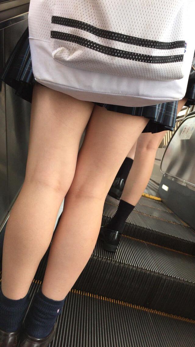 【画像】「女子高生のふともも」っていうワードだけで抜けるのに写真もどうぞ