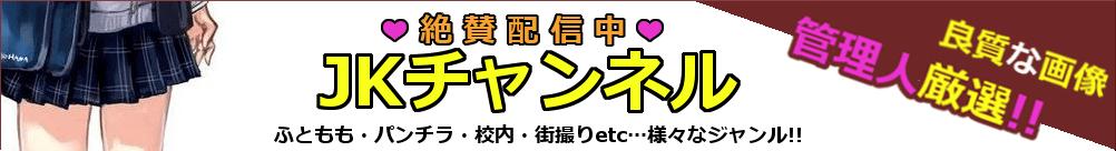 サイト情報